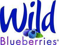 wb logo 4