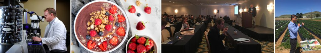 berry-health-benefits-symposium-2019-schedule-page-header
